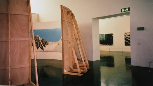 Walsall Art Gallery, Panorama, installation view