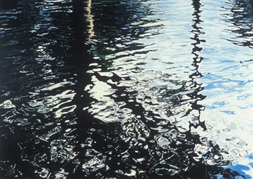 Botanical Gardens, 2005, acrylic and glitter on canvas, 60 x 84 cm