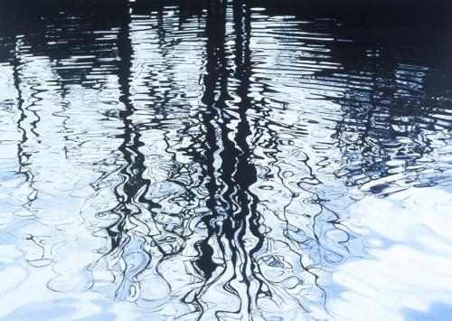 Castlemane, 2005, acrylic and glitter on canvas, 60 x 84 cm