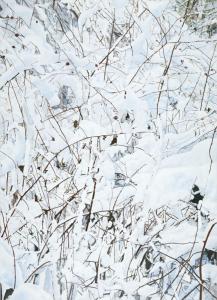 Brambleberry, 2010, acrylic and glitter on canvas, 84 x 60 cm