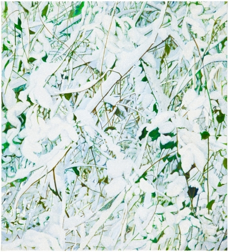 Park, 2012, acrylic and glitter on canvas